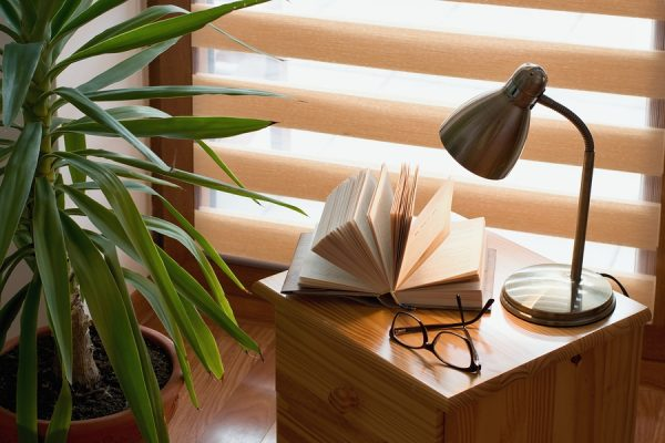 Wooden blinds in background with table, book, glasses, lamp and plant in foreground.