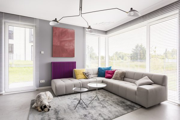 Sunroom shades in the windows with a sectional couch, decorative lighting and a dog on a gray rug.